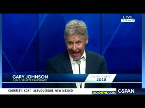 GARY JOHNSON vs MICK RICH vs SENATOR MARTIN HEINRICH New Mexico U.S. Senate Debate