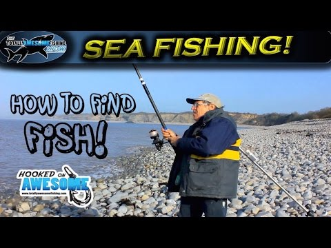 Beach Fishing | How to find fish! - TAFishing