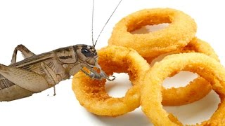 Cricket Onion Rings
