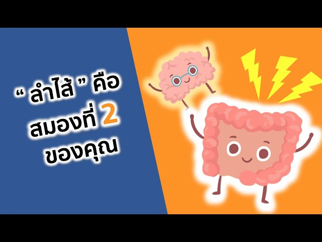 Health Hack by Thrive - Ep.1 Your Gut is your second brain