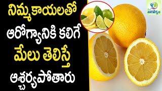 Lemon Health Benefits - Health Tips in Telugu || mana Arogyam