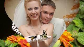 Живые бабочки для подарка на свадьбу, http://babochki.kiev.ua