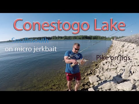 Conestogo Lake Fishing - This Lake Is Full Of Life !