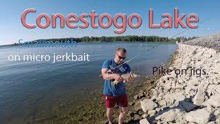 Conestogo Lake Fishing - This lake is full of life !