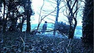 Аквариум - Камни в холодной воде
