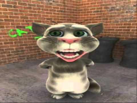 Fobby Talking Cat!  Billi Boly!  Cat Boliyan!  Punjabi + Hindi