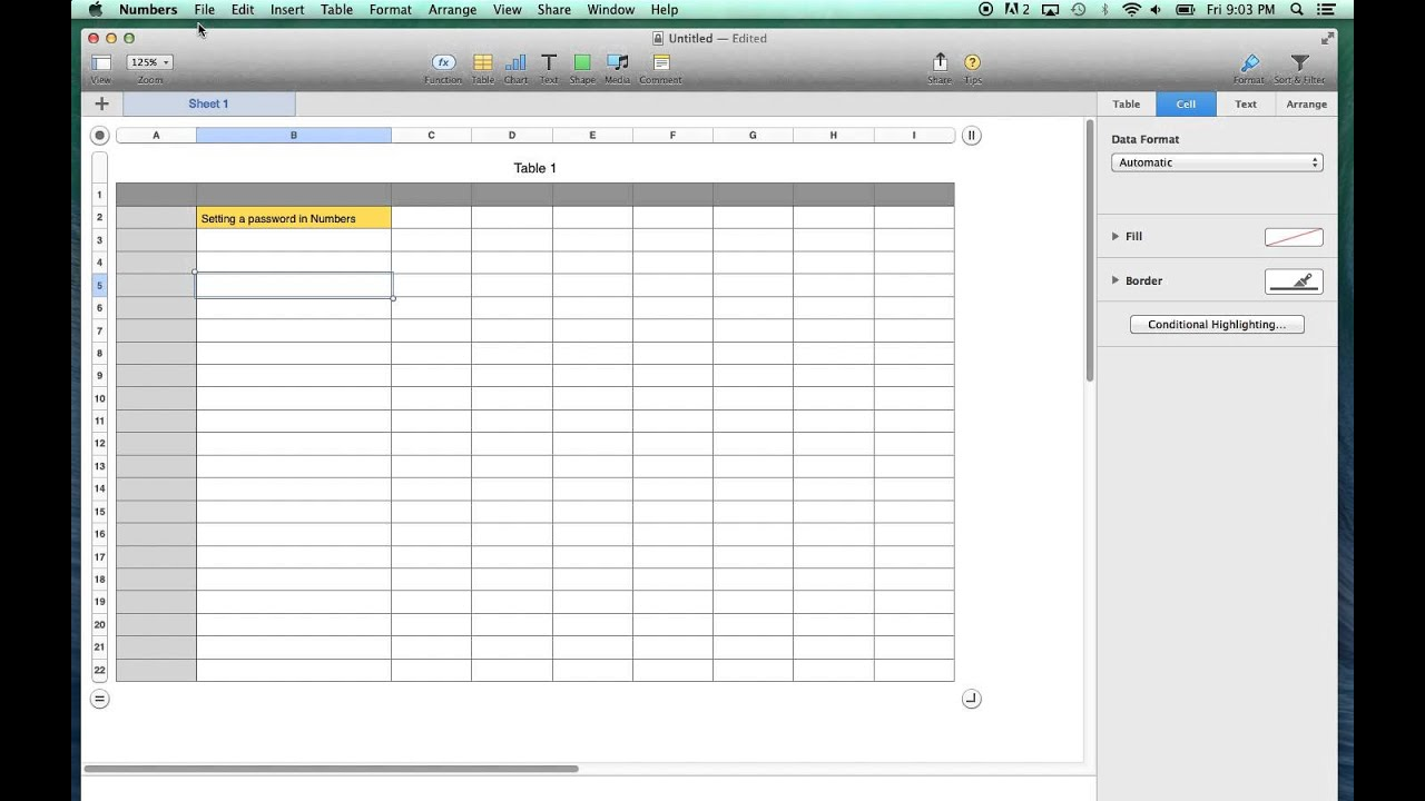 password protect numbers spreadsheet on a mac