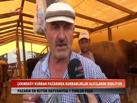 Kanal G Haber Kurban pazarının nabzını tuttu