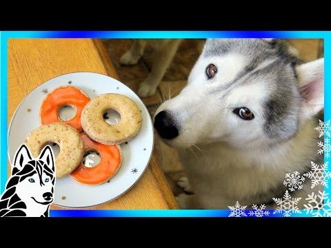 DIY DOG TREATS APPLE CINNAMON DONUTS   Snow Dogs Snacks 57   DIY Dog Treats