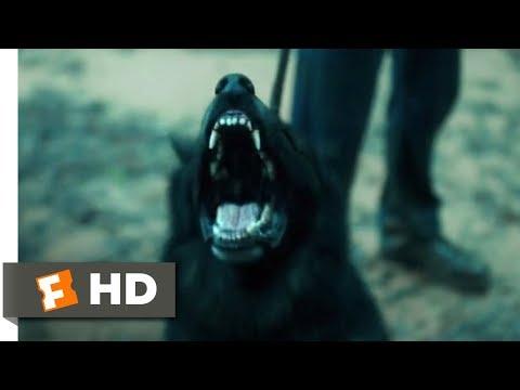 Rings (2017) - Samara's Grave Scene (4/10) | Movieclips