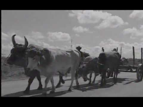 VIDEO GUIDES - CUBA