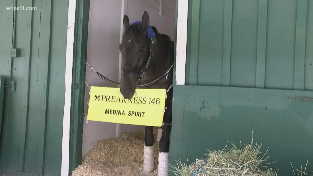 Medina Spirit cleared to run in Preakness Stakes after passing three ...