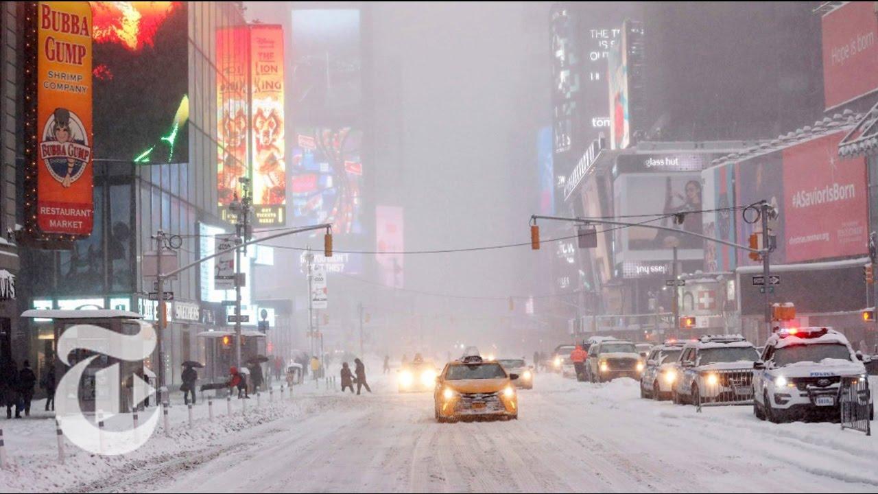 New York: McGraw-Hill, 2001: 1041 s.