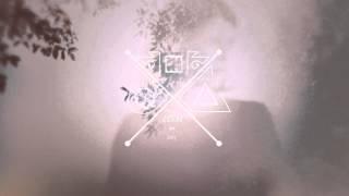 Basenji - Heirloom
