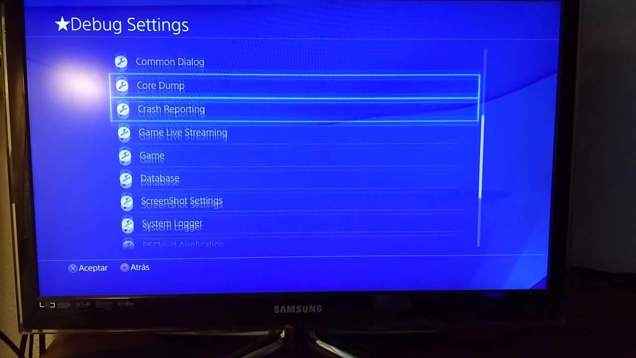 Debug Settings PS4