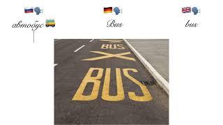 """Электробус светит всем. Оmnibus, автобус и компания в рубрике """"Образ слова""""."""