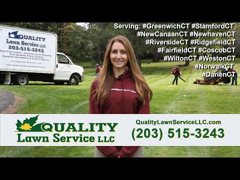 Quality Lawn Service LLC - Top Rated Fairfield County CT Landscaping, Snow Removal, and more!