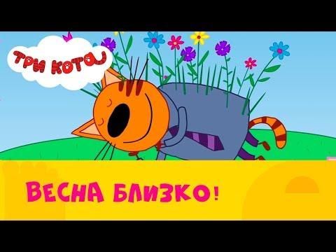 Три кота | Сборник весенних серий 🌸  |  СТС Kids