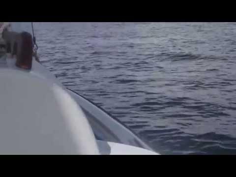 Sailing round the world