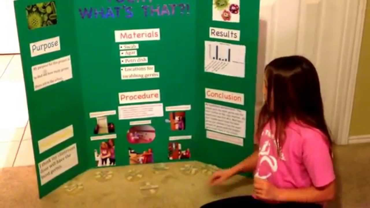 germ science fair experiment in elementary school germ science fair experiment in elementary school