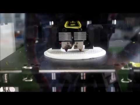 Raise 3D N1 Vs. Ultimaker 2+ - XL-Druck Mit ABS - Deutsch - Test - Vergleich