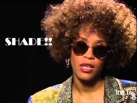 Whitney SHADING interviewers