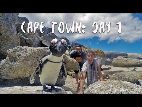 BOULDER'S BEACH | Africa Vlog 12