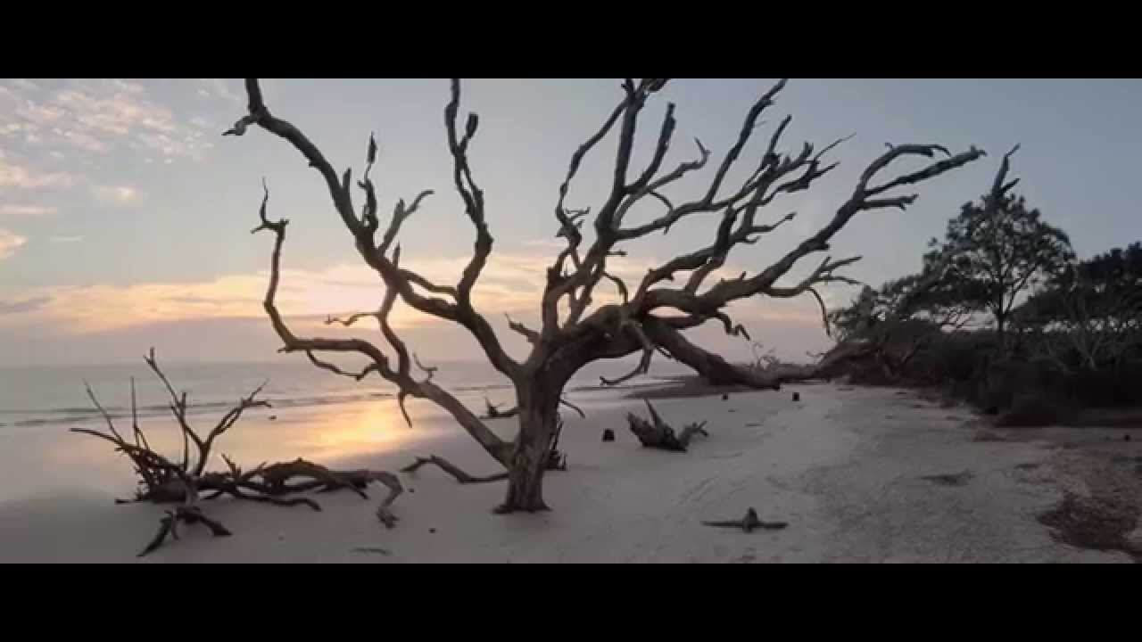 "The Next 100 Years >> ""Erosion"" in 4K - Driftwood Beach, Jekyll Island, GA - YouTube"
