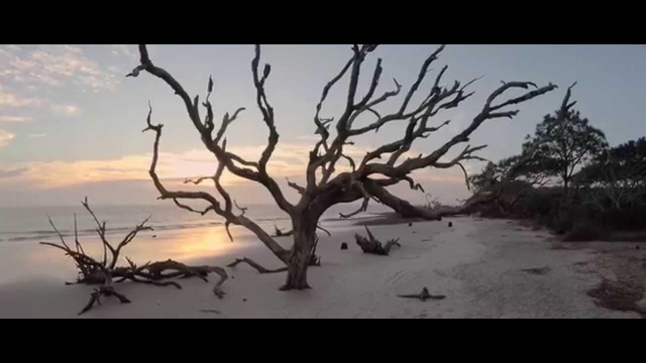 Erosion In 4k Driftwood Beach Jekyll Island Ga You