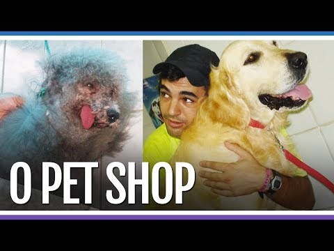 O PET SHOP DO DIEGO E A CACHORRA GINASTA  Ep 25  Canal dos Goiabas