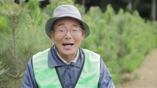 特定非営利活動法人 高田松原を守る会 thumbnail