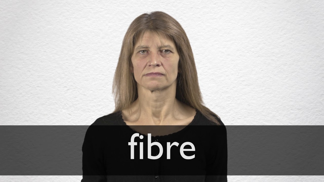 Fibre definition and meaning | Collins English Dictionary
