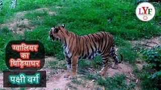 Gwalior Zoo! Chidiyaghar! ग्वालियर का चिड़ियाघर!