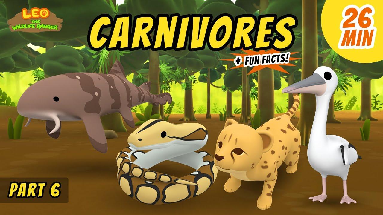 Carnivores (Part 6/6) - Animals Stories for Kids | Educational | Leo the Wildlife Ranger