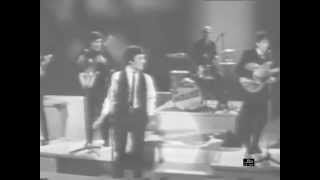 The Hollies - Too Much Monkey Business (Shindig)