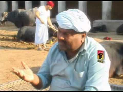 Saraiki drama azli tay fazli funny clip Sadaf cd corner Guddu prop Rasheed ahmed mon 03337424019.flv