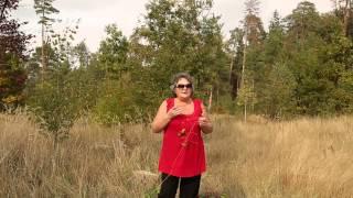 видео Уход за кожей лица от 30 до 40 лет в домашних условиях