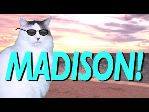HAPPY BIRTHDAY MADISON! - EPIC CAT Happy Birthday Song