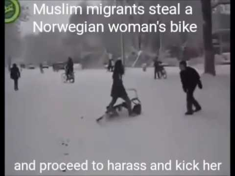 Migrants steal woman's bike and mob attack her