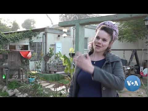 COVID Era Sees Revival Of Israel's Kibbutz Communes