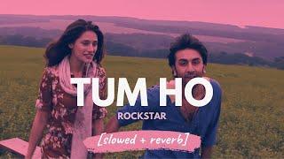 Tum Ho - Mohit Chauhan (Rockstar) [slowed + reverb]