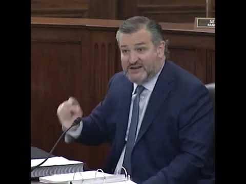 """Ted Cruz Turns the Tables on Democrats Over """"Voter Suppression"""" Rhetoric"""