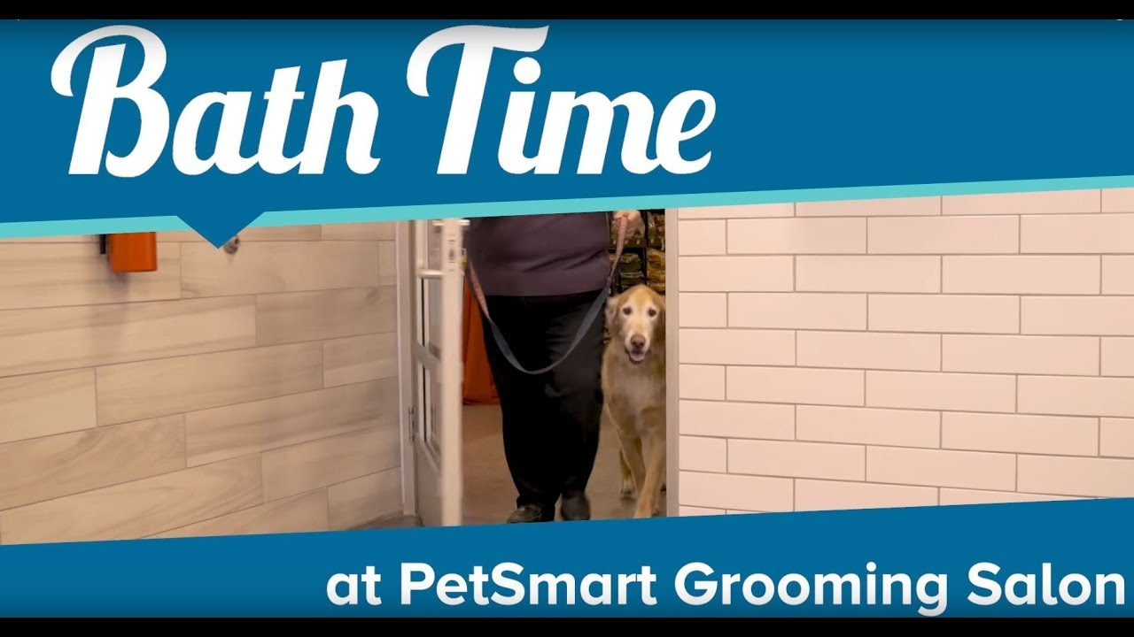 New Safety Standards At Petsmart Grooming Salons