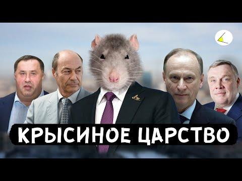 «Крысиное Царство» | Путинизм как он есть #8