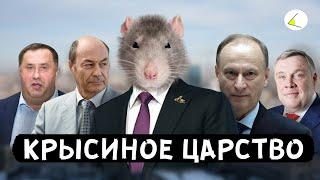 Download «Крысиное Царство» | Путинизм как он есть #8 Mp3 and Videos