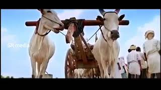 MADHURA RAJA _ New Official Movie trailer _ Mammootty _ Jai