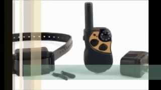 Buy Petsafe Remote Trainer - Pdt00-10603 Dog Training Collar At Petproductsonline.info | Buy Usa!