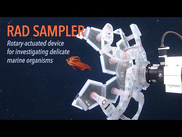 RAD Sampler: Rotary-actuated device for investigating delicate marine organisms
