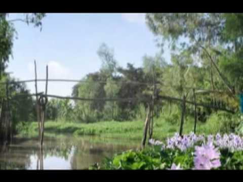 Về lại Phong Điền - Bùi Thanh Thủy - Lê Trúc Khanh - Thanh Tuấn