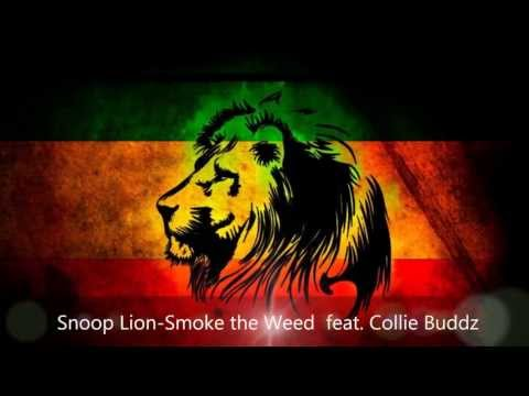 Snoop Lion - Smoke The Weed  Feat. Collie Buddz